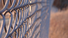 Fence Closeup