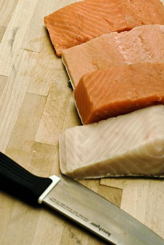 Salmon Lineup