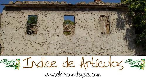 Banner Indice de Articulos de El rincón de Sele.
