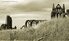 The Destitution of Majesty (James Sheppard Photography) Tags: ruins remains remnants majesty whitbyabbey destitution canon450d jamessheppard thepowerofnow