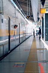 Peekaboo! Shinkansen [Bullet train] at Tokyo Station, Japan (Alfie | Japanorama) Tags: station yellow japan train japanese tokyo workers nikon bokeh guard platform rail railway line staff learning worker f2 teaching lesson publictransport shinkansen bullettrain documentaryphotography nikkor85mmf14afd photographylessonsintokyo