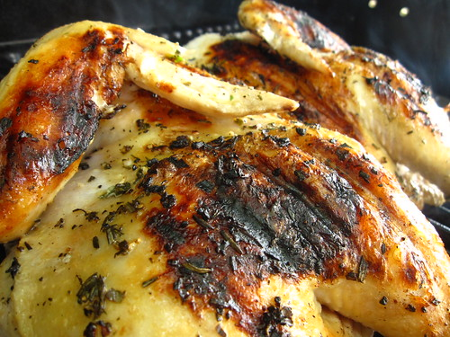 Grilled Chicken Under a Cast Iron Pan