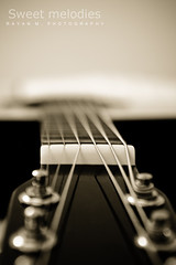 Sweet Melodies (Rayan M.) Tags: music art monochrome sepia guitar cords sony melody listening acoustic strings sensational senses tunes alpha dslr  a350      sweetmelodies    inspirationbymusic
