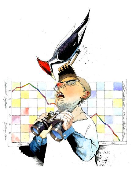 bird_brain.jpg