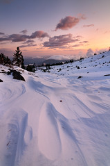 Sastrugi (Michael Bollino) Tags: winter mountain snow cold oregon volcano nikon wind first formation explore hood snowfall mounthood sastrugi d300 michaelbollino