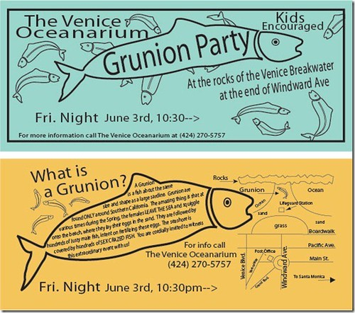 Grunion 2011 Venice Beach