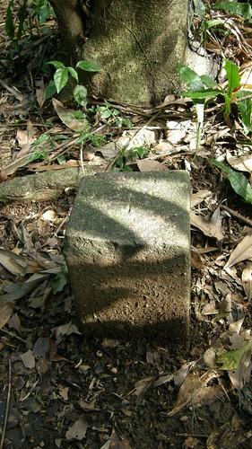 081.石梯坑山三角點