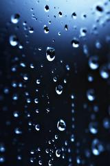 012/365 ({*Sue*}) Tags: blue winter blackandwhite macro water rain closeup silver reflections drops momo dof sad bokeh photoaday sigma105mm project365 2009yip photoaday2009 3652009