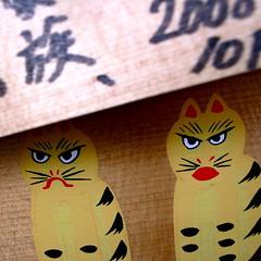 got the tiger by the tail (troutfactory) Tags: cats macro japan digital square angry tigers  kansai ricoh ema  kurama  kuramayama  grd2 prayerplaque moukuramakuramayamamount