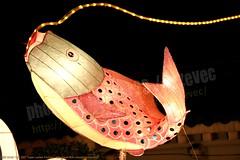 2007-03-03 1124 2007 Taipei Lantern Festival (Badger 23 / jezevec) Tags: festival night lights pig colorful taiwan parade taipei formosa float  hai taipeh boar  lanternfestival 2007  chineselantern  chiangkaishekmemorialhall  republicofchina yearofthepig    aonuevochino  capodannocinese   taiwn chaingkaishek   20070303    tapeh    badger23 shangyuanfestival ftedeslanternes     lyhtyjuhla chinesischeslaternenfest