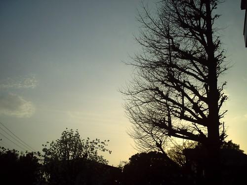 sunset...auto