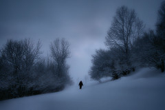 hes gone / sen va - II (Ferran.) Tags: snow joan natura catalonia pyrenees neu esq queralbs joansito atomicaward