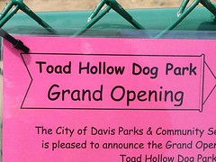 a dog park opens in Davis, CA (by: Bev Sykes, creative commons license)