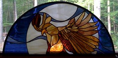 finished hawk window
