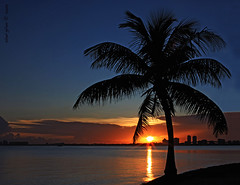 Story of a Miami sunset (iCamPix.Net) Tags: sunset canon florida miami tropical keybiscayne 7718 miamidadecounty markiii1ds