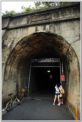 東豐自行車22