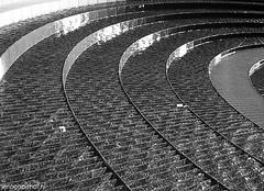 Darling Harbour (Jeroenolthof.nl) Tags: port bay jeroen photographer harbour district central sydney australia jackson business wharf cbd darling cockle olthof p1f1 wwwjeroenolthofnl jeroenolthofnl jeroenolthof