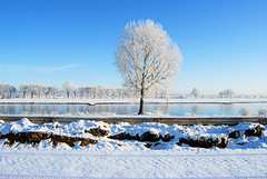 Winterscape on the Meuse (Beyond the grave) Tags: winter maas meuse cuijk noordbrabant netherlands snow landscape