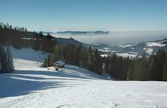 (atralux) Tags: mist fog austria sterreich nebel sledding snowshoeing bregenzerwald hochnebel schneeschuhtour bdele bregenzforest