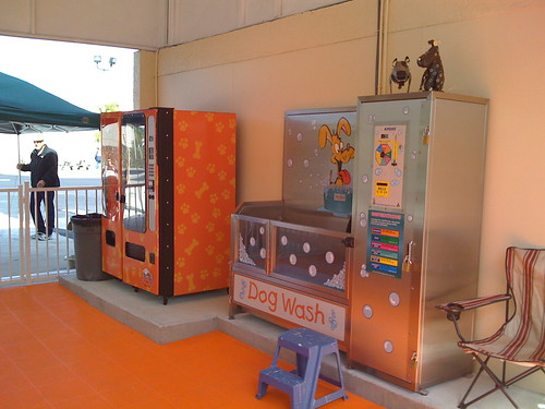 Do it yourself dog wash the best dog of 2018 diy dog wash grooming services the dog wash solutioingenieria Images