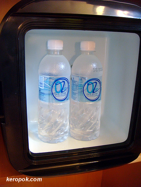 The fridge only allows you to put in 2 bottles of water!