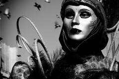 dramma in maschera con uccelli (Nicola Zuliani) Tags: venice carnevale venezia biancoenero maschere nizu nicolazuliani wwwnizuit