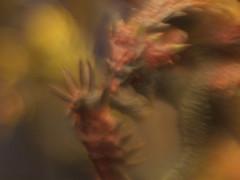 リオレイア亜種 / Pink Rathian