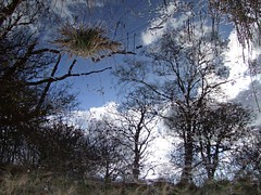 Reflections (nz_willowherb) Tags: wallpaper reflection see scotland tour surreal visit tourist visitor killin artinnature thoughtprovoking to go visitkillin seekillin gotokillin