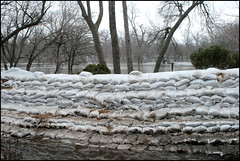 too many to count (djFargo) Tags: water river march spring flooding flood northdakota nd redriver mn 2009 fargo sandbags moorhead fargoflood2009