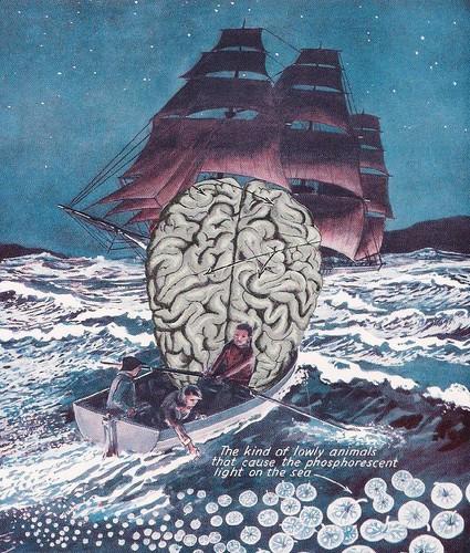 Sea Brain