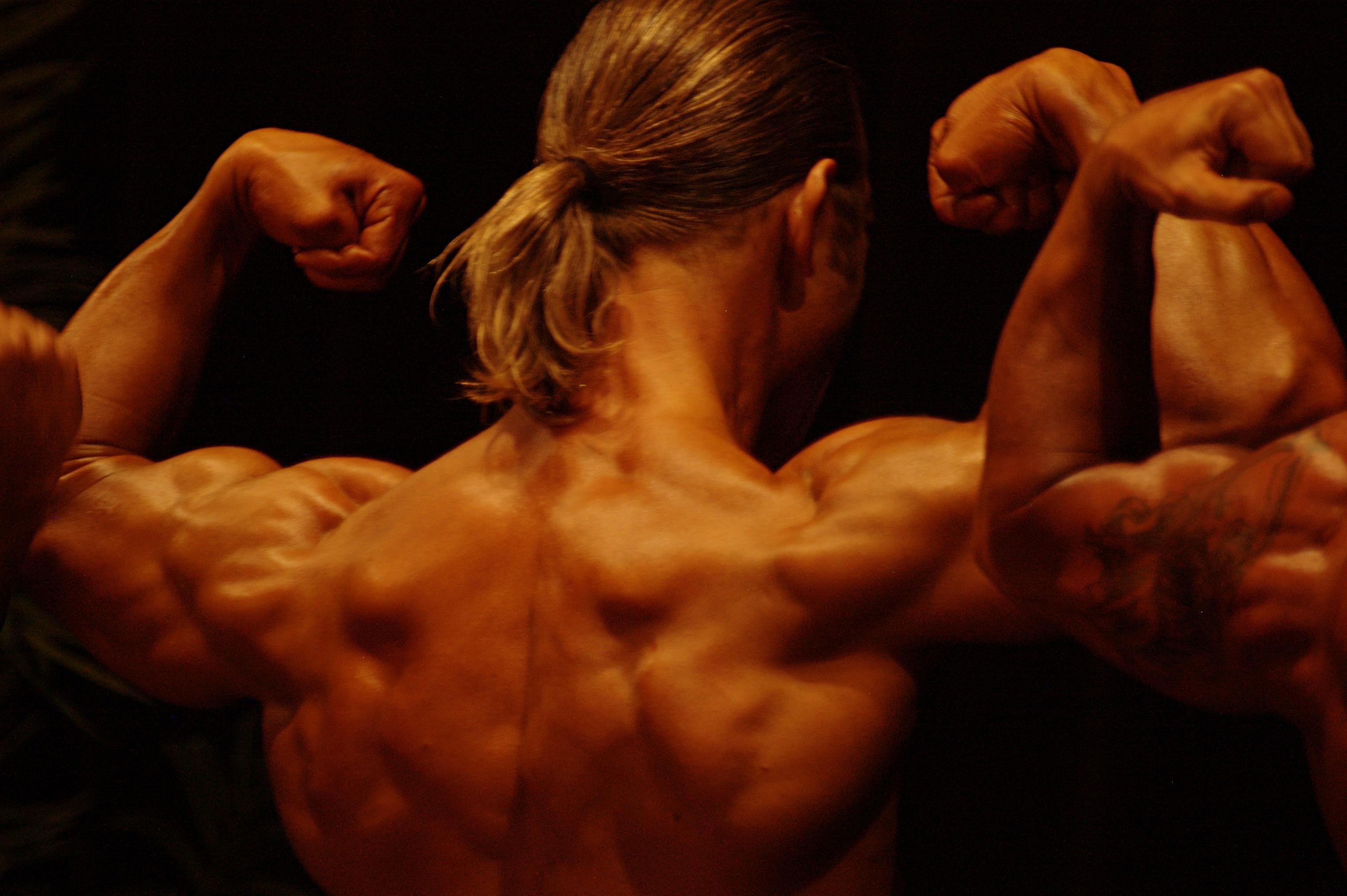 rogue bodybuildingsupplement