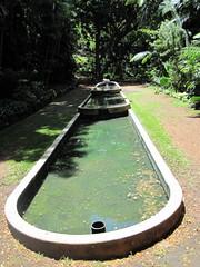 Day 3-95 (djfrantic) Tags: summer vacation island hawaii kauai fourthofjuly gardenisland ntbg allertongarden mcbrydegarden nationaltropicalbotancalgarden