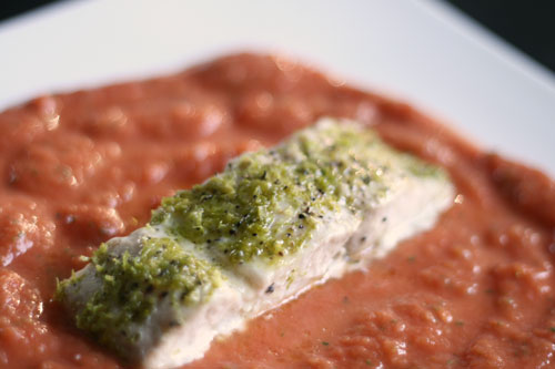 Lime Crusted Mahi Mahi on Spicy Tomato Puree