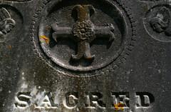 Sacred (madams4921) Tags: pentax takumar 55mm smc k100dsuper
