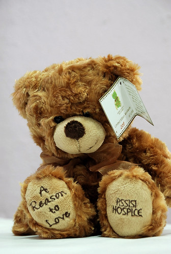 Teddy Bear - Assisi Hospice
