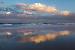 Peaceful Morning at Torrey Pines (Scott Lawson) Tags: ocean california beach clouds sunrise san state diego pines torrey