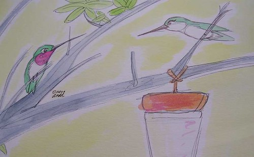 8.15.09 - Hummingbird Feeder Standoff