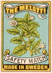 safetymatch051