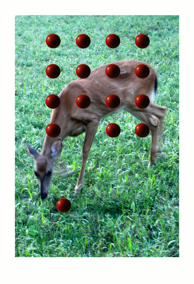 Red Spheres & Doe