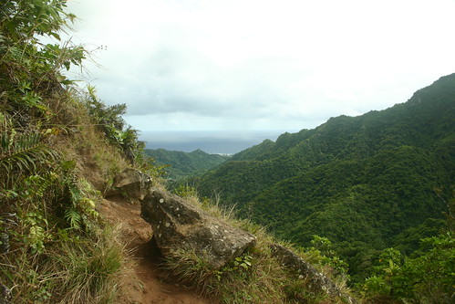 Rarotonga Cross Island Track