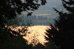 IMG_0709 (michael_owskey) Tags: oregon landscape bridalveil