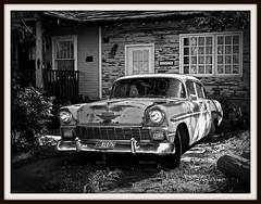 The 3000 Chevy (Anarchivist Digital Photography) Tags: blackandwhite rustedcars oldchevys canong10