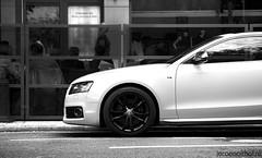 Audi S5 (Jeroenolthof.nl) Tags: white black sports car sport jeroen dusseldorf audi dsseldorf coupe duesseldorf v8 v10 s4 oranje rs4 s5 r8 rs6 k knigsallee s6 sportcar s8 olthof konigsallee rs5 jeroenolthofnl