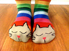 barking dogs and snoozing kitties (Fenchurch!) Tags: cats socks rainbow stripes fenchurch