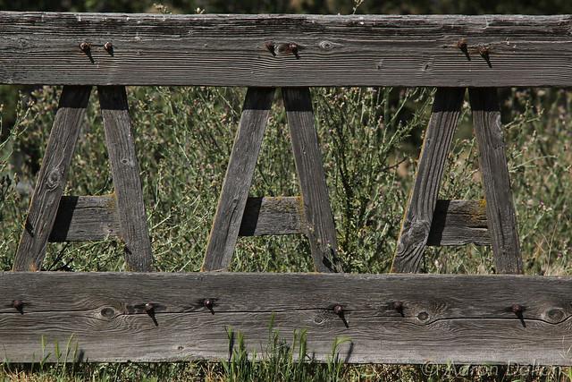 A Frame Fence