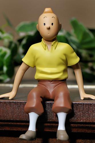 Tintin 2009 01 12_2013