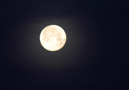 14 - Full Moon