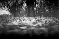 XA2: Bottom Half (fwumpbungle (broomephoto)) Tags: blackandwhite film monochrome 35mm low delta olympus xa2 iso 400 ilford gravel selfie