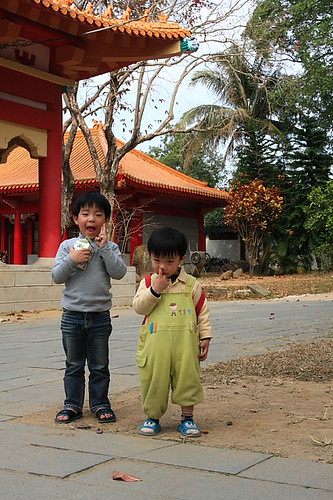 嘉義公園孔廟23
