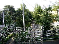 水神社から小径がつづく。